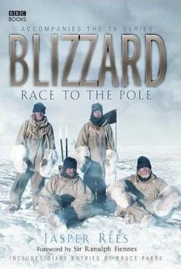 Постер фильма Буран: Гонка к полюсу (2006)
