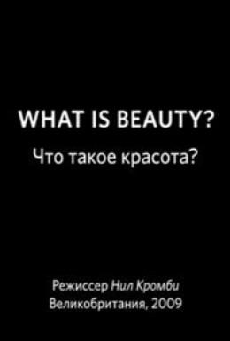 Постер фильма BBC: Что такое красота? (2009)