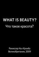 BBC: Что такое красота? (2009)