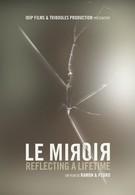 Зеркало (2010)