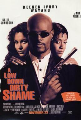 Постер фильма Пропавшие миллионы (1994)