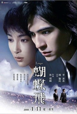 Постер фильма Задержавшийся (2008)