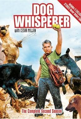 Постер фильма Переводчик с собачьего (2010)