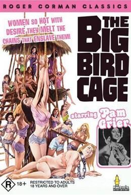Постер фильма Большая клетка для птиц (1972)