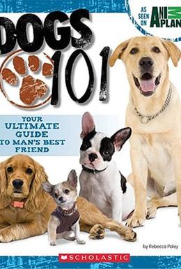 Постер фильма Введение в собаковедение (2008)