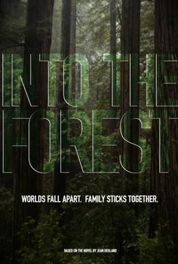 Постер фильма В лесу (2015)