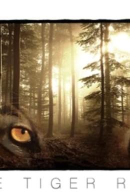 Постер фильма Парящий тигр (2021)