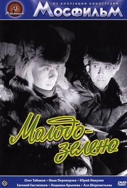 Постер фильма Молодо-зелено (1963)