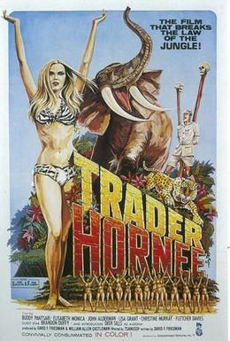 Постер фильма Торговец звуками (1970)