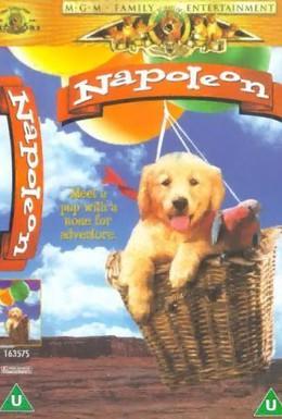 Постер фильма Наполеон (1994)