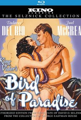 Постер фильма Райская птичка (1932)