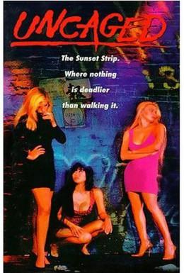Постер фильма Ангел в красном (1991)