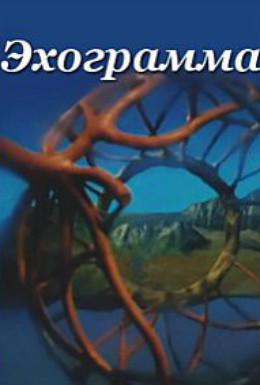 Постер фильма Эхограмма (2003)