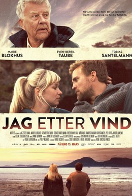 Постер фильма Погоня за ветром (2013)
