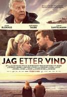 Погоня за ветром (2013)