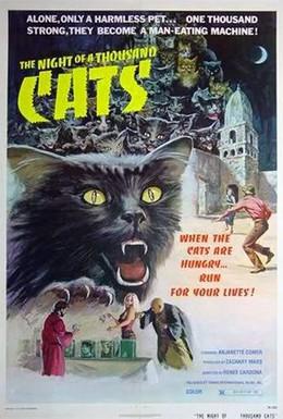 Постер фильма Ночь 1000 котов (1972)