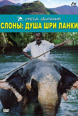 Постер фильма Слоны: Душа Шри-Ланки (2000)