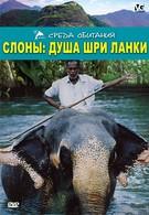 Слоны: Душа Шри-Ланки (2000)