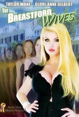Постер фильма Ох, уж эти жены (2007)