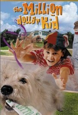 Постер фильма Парнишка-миллионер (2000)