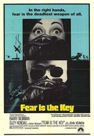 Страх отпирает двери (1972)