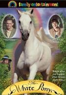 Белый пони (1999)