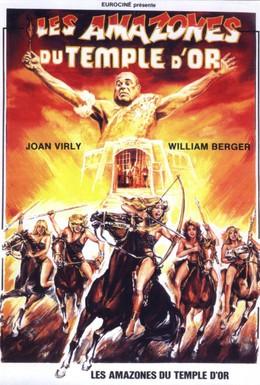 Постер фильма Амазонки золотого храма (1986)