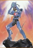 Акустический воин Боргмен: последняя битва (1989)