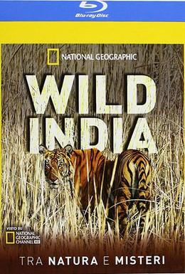 Постер фильма Тайны дикой природы Индии: Львы пустыни (2012)