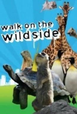 Постер фильма Прогулка в дикой природе (1999)