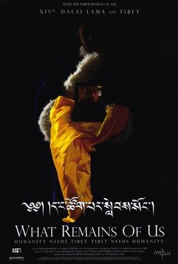 Постер фильма Что от нас осталось (2004)