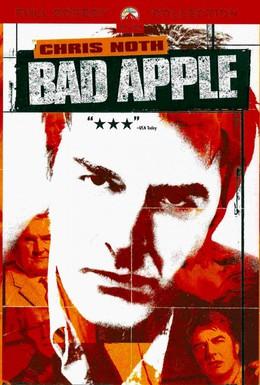 Постер фильма Агент под прикрытием (2004)