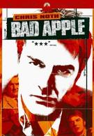 Агент под прикрытием (2004)