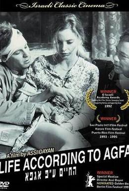 Постер фильма Жизнь по Агфе (1992)
