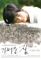 Лёгкий сон (2008)
