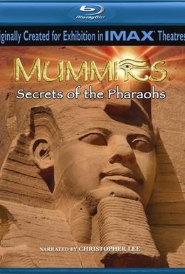 Постер фильма Мумии: Секреты фараонов 3D (2007)