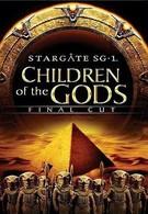 Звездные врата ЗВ-1: Дети Богов – Финальная версия (2009)