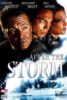 Постер фильма После шторма (2001)