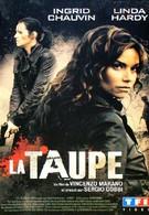 Шпион (2007)