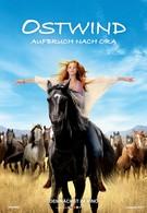 Восточный ветер 3: Наследие Оры (2017)