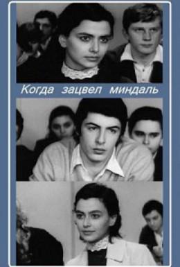 Постер фильма Когда зацвел миндаль (1972)