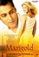 Мариголд: Путешествие в Индию (2007)