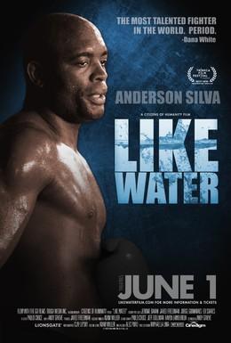 Постер фильма Как вода (2011)