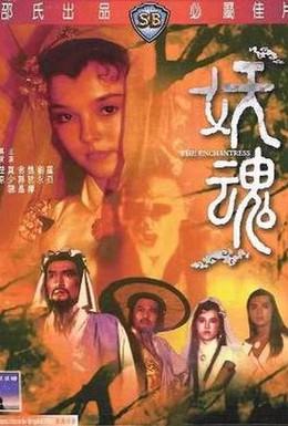 Постер фильма Чародейка (1983)