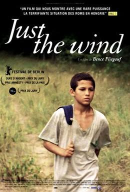 Постер фильма Просто ветер (2012)