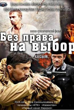Постер фильма Без права на выбор (2013)