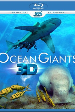 Постер фильма Гиганты океана 3D (2011)
