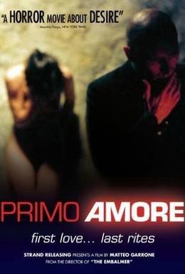 Постер фильма Первая любовь (2004)