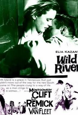Постер фильма Дикая река (1960)