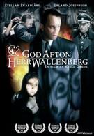 Добрый вечер, господин Валленберг (1990)